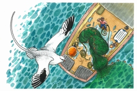 Ave del paraiso-Martin-Mak-Ilustración